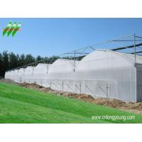 China china cold frame shade cloth,  mini garden greenhouses,  plastics horticulture,  irrigation equipment,  solar greenhouse plans,  greenhouse kits,  greenhouse heaters,  greenhouse emission systems,  polycarbonate greenhouses company,  greenhouse vegetable,  raw mate on sale