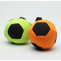 Quality Football Round Floatable Dog Toys Dog Toys And Chews Attractive Design for sale