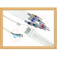 Quality Philips HP Ecg Patient Cable 10 Lead Wires Needle AHA Philips Ecg Cables for sale