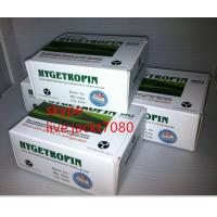 Quality 99% hygetropin Hgh Human Growth Hormone  CAS NO.:6 188627-80-7 for sale
