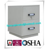 Quality Fire Resistant Filing Cabinets , 2 Drawer Fireproof File Cabinets For Documents for sale