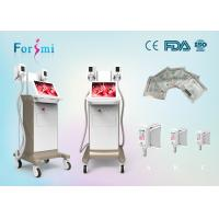 China Factory sale cryo fat freeze lipolyse/cryotherapy fat reduction machine for body slimming on sale