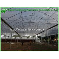 Quality large plastic greenhouse hot sale for sale