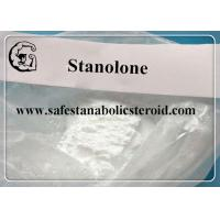 Quality Stanolone / Androstanolone Raw Steroid Powders for muscle mass and strength CAS 521-18-6 for sale