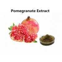 China Supplements Fruit Extract Powder Pure Natural 30% Punicalagin Pomegranate Extract on sale