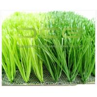 Quality Football Field C Shape Synthetic Grass Carpet 11000Dtex Fire Resistance Anti UV for sale