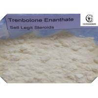 Quality CAS 472-61-546 Trenbolone Steroid With Male Hormone Drug Property , No Side Effect for sale