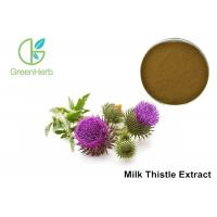 Quality Milk Thistle Natural Plant Extracts 80% Silymarin For Liver Protecting for sale