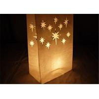 """Quality Paper Packaging Bags / Luminary Lantern Bags Path Lighting 6""""Width x 10""""Height x 3.5""""Depth for sale"""