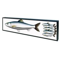 Quality Open Frame Shelf Edge Lcd Display Customized Color 50,000 Hours Panel Life for sale