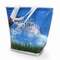 Quality PP Nonwoven Cooler Bag with One Main Compartment to Carry Food and Drinks for sale