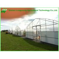 Quality agriculture greenhouse for hot place for sale