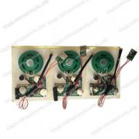 Quality Recordable sound module s-3029 for sale