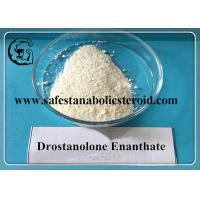 Quality Drostanolone Enanthate 472-61-145 Muscle Gain Effective Estrogen Blocker for sale