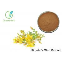Quality Brown Yellow Powder HPLC UV 3% Hypericin St John's Wort Extract powder for sale