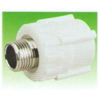 Buy cheap Male Thread Coupling/PPR (ZB20*1/2′mm-75*2 1/2′mm) from wholesalers