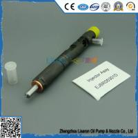 China F50001112100011 delphi injector EJBR05301D(F5000-1112100-011) 5301D daf injector pump R05301D F5000-1112000 for YU-CHAI on sale