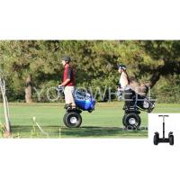 Quality Outdoor off road travel Segway Electric Scooter Transporter For wild Park for sale