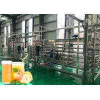 China Complete apple & pear juice production line processing plant full automatic machinery on sale