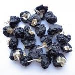 Quality 2017 New Amorberry Wild goji bery/ wild wolfberry /Qinghai Black goji for sale