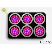 China P6 Dimmable Led Lights for Flower Exhibition on sale