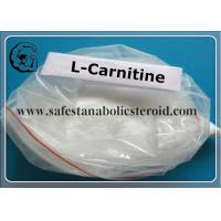 Quality 99% Purity L-Carnitine Fat Loss Hormones 541-15-1 L-Carnitine For Adult for sale