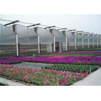 Quality Greenhouse Coverings Polyethylene Film UVA Diffused 0.06mm-0.14mm Thickness for sale