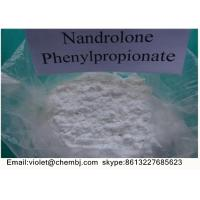 Buy cheap Nandrolone Phenypropionate ( Durabolin ) CAS 62-90-8 99% Purity Steroids Powder from wholesalers