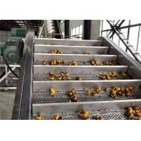 China Energy Saving Passion Fruit Processing Line Easy Operation CE Certificate on sale