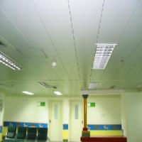 Quality Linear Ceiling Tile for Intrior Decoration (TLD-217) for sale