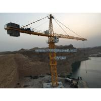 Quality 70M Arm Booom 20tons Load TC7050 Hammerhead Crane Tower 5m Mast Section for sale