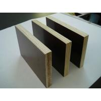 Quality 9mm tego waterproof film faced shuttering plywood price film faced plywood for Thailand for sale
