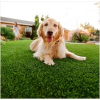 Buy PE PP Softness Friendly Pet Artificial grass 25mm Waterproof For Dogs 4 Tone at wholesale prices