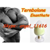 Quality Trenbolone Enanthate Most Powerful Nabolic Steroids Tren Enan White Powder for sale