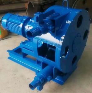 China RGB peristaltic pump hose pump slurry pump high viscosity fluids pump on sale