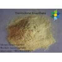 Quality Natural Safe Trenbolone Powder Anabolic Legal Steroids For Muscle Building for sale