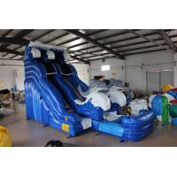 Buy Dolphin Inflatable Water Slide For kids at wholesale prices