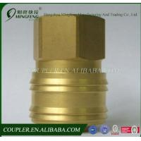 Quality Quick Coupling and Brass Fitting of ZG1/4F quick coupler suit for European market for sale
