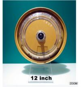 China DM-260 12inch gearless  brushless hub motor on sale