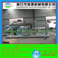 Quality Double screw extruder made in China with CE fish feed production line for sale