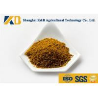 Quality 65% High Protein Fish Meal Powder Strong Package Rich Vitamin For Aquaculture for sale