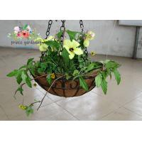 Quality Wall Decor Indoor Hanging Flower Baskets , Round Hanging Plant Holders for sale