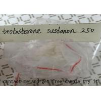 Quality Testosterone Sustanon 250 For Muscle Building , Testosterone Blend Powder for sale