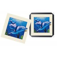 Quality Modern 3d Custom Lenticular Printing With PS Frame , 5d Deep Effect Photos for sale