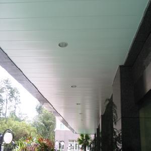 Quality False Strip Ceiling Tile (TLD-170) for sale