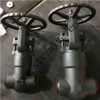 Quality FORGED STEEL GLOBE VALVE (RF/NPT/BW ends) for sale