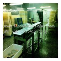 Quality checkweigher systems online hot sales in Indonesia for lollipops production line for sale