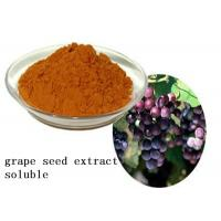 Quality Heart Health Natural Plant Extracts Proanthocyanidins OPC Soluble Grape Seed for sale