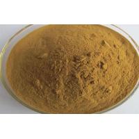 Quality CAS 535 83 1 Natural Weight Loss Powder Trigonelline Weight Loss Ingredients for sale