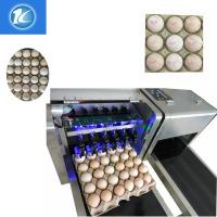 Quality 1600x410x980mm Size Egg Jet Printer Machine With Low Maintenance Costs for sale